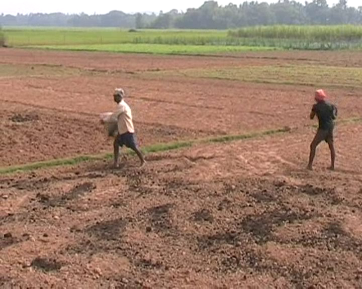 farmer prepairing: