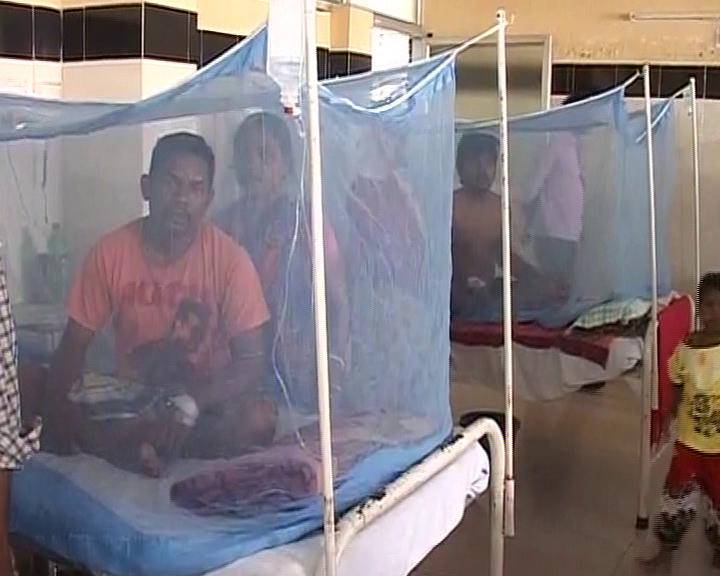 dengu situation in badabil