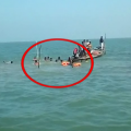 Chilika Boat Drown