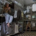 people in this city lives in animal cage