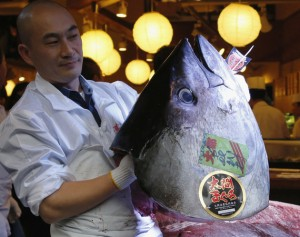 Kiyomura Co's employee holds the head of a 222 kg bluefin tuna after cutting its meat at the company's sushi restaurant outside Tsukiji fish market in Tokyo