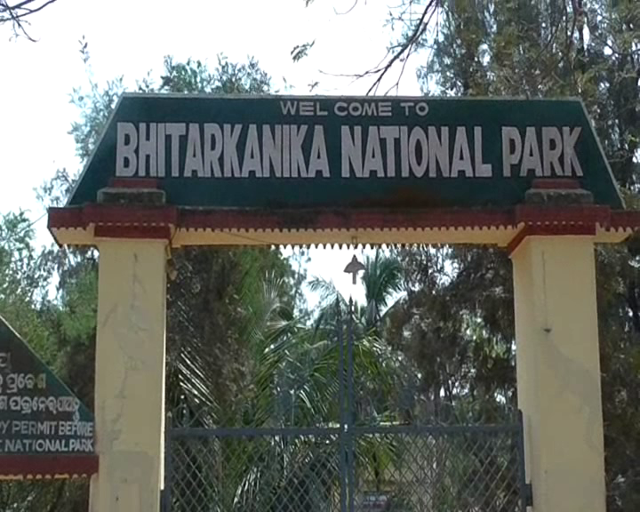 Bhitarkanika Park to remain closed from Jan 2 to 8 for crocodile counting