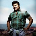 Mammoothy