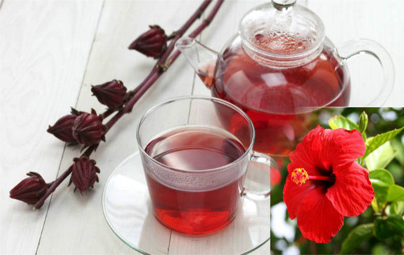 life style -china rose drinks interesting in summer