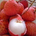 Litchi-or-Lychee
