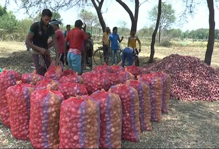Kalahandi Farmers Selling Onions At Low Price