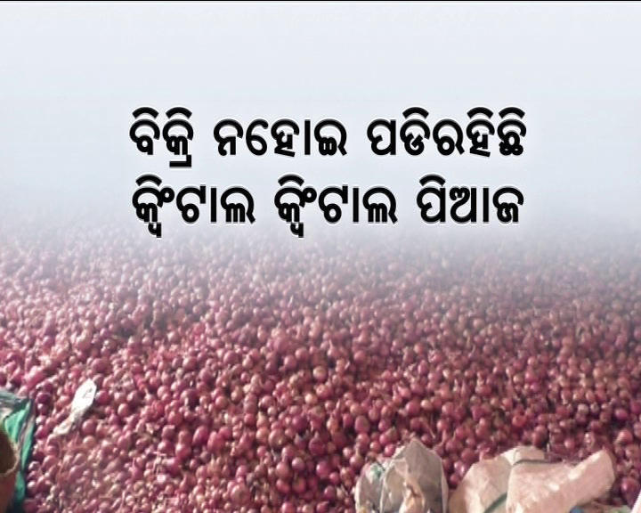 farmers selling onions at low price