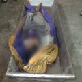 bolangir farmer suicide