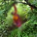 keonjhar suicide