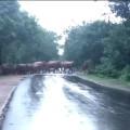 Dhenkanal