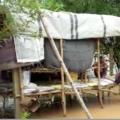 flood in dhamanagar