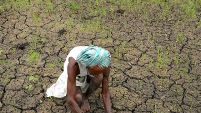 drought like situation in bolangir
