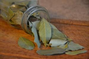 Tejpatta Bay-Leaf health benefits