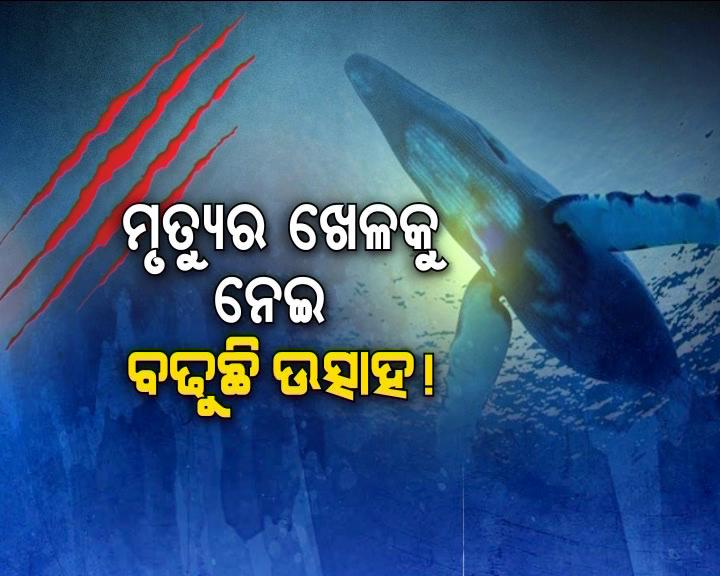 Blue whale game in odisha