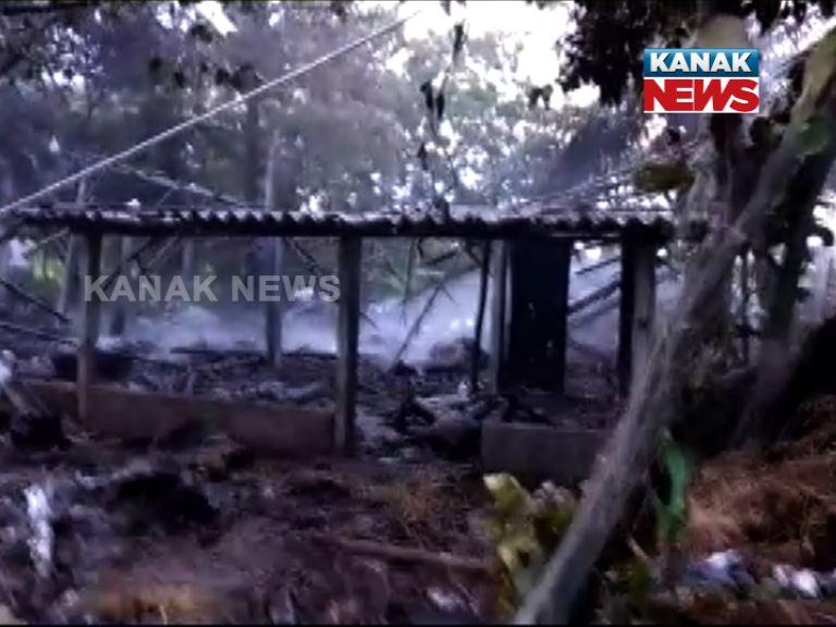 firecracker explosion, 7 died