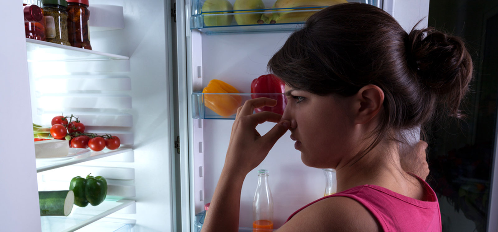 bad smell fridge