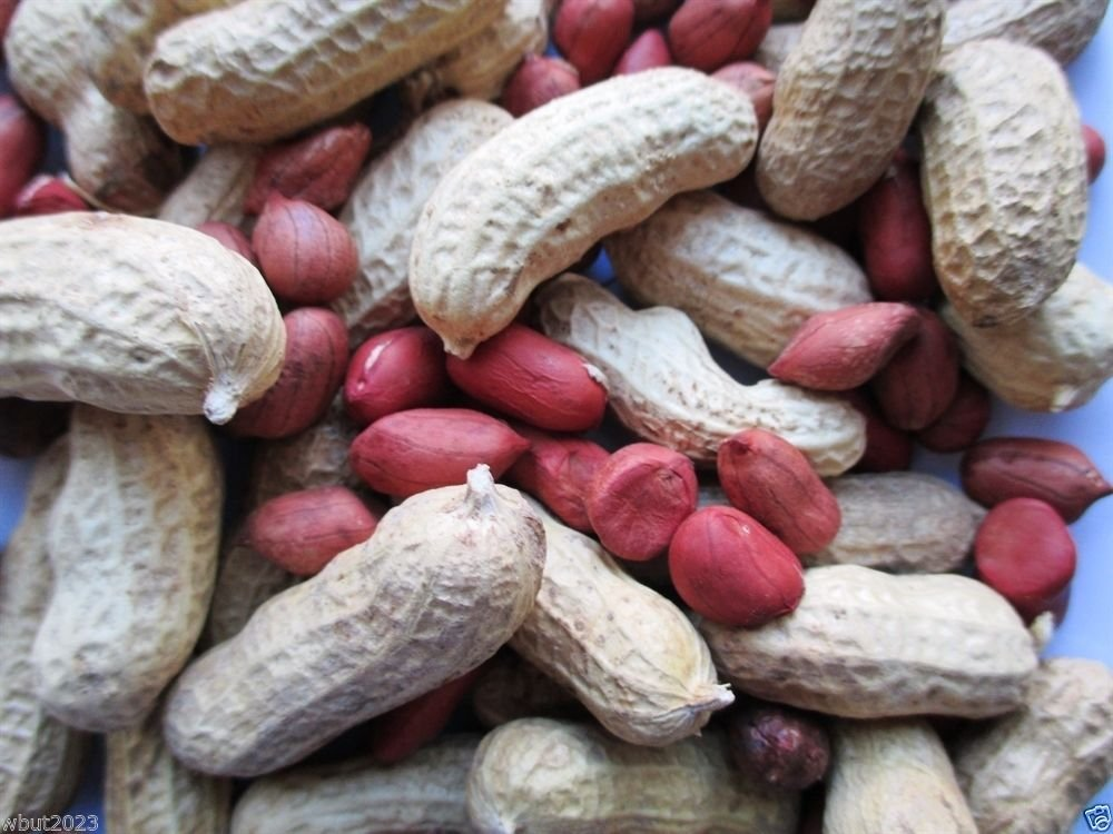 peanut health benefits