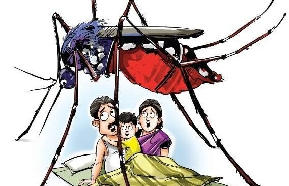dengue-