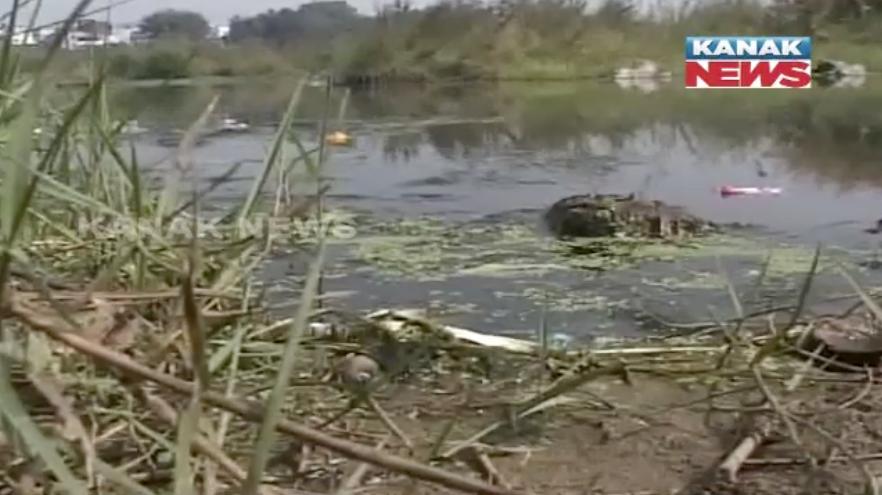 polluted mahandi water