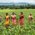 women-farmers