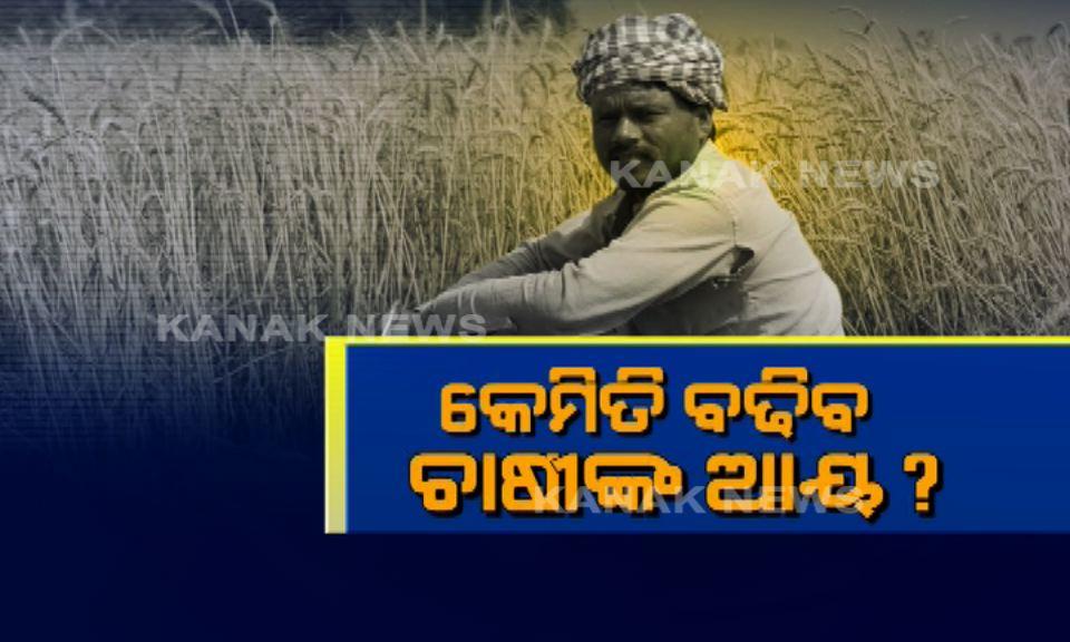 farmers income