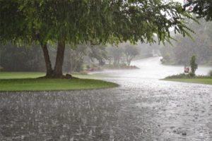 heavy rain fall