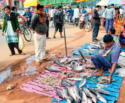 bbsr fish market