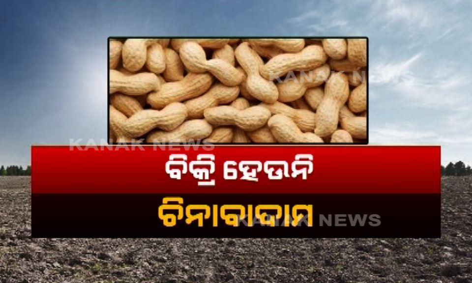 nut selling problem