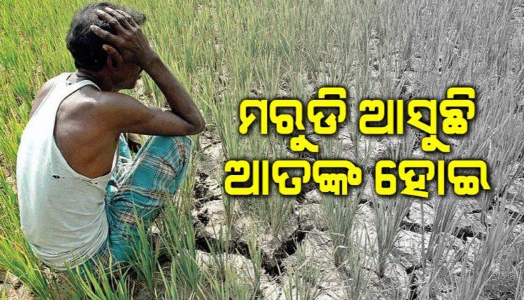 Farmer-suicide 01034912