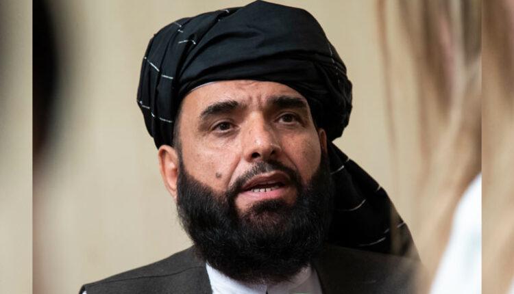 Taliban-spokesperson-Suhail-Shaheen-AP