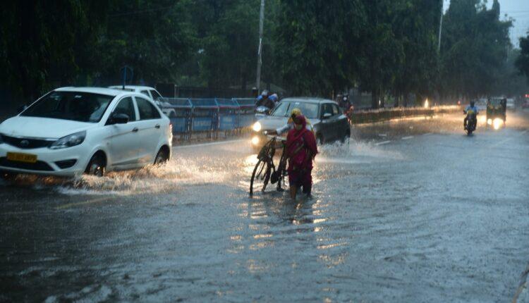 in-rain_48