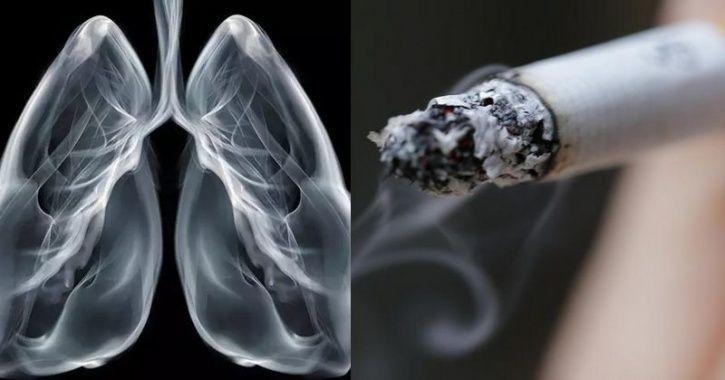 smoking_1570861177_725x725