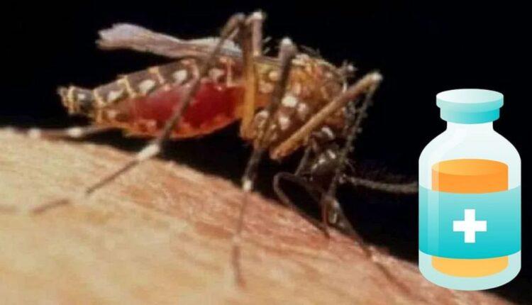 malaria-1200×675